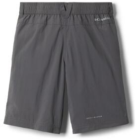 Columbia Silver Ridge IV Shorts Jongens, grijs